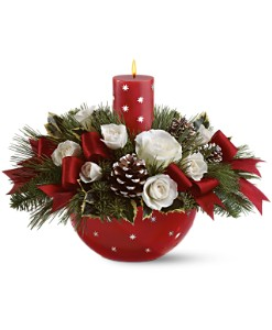 Holiday Star Bowl Bouquet by Teleflora in Oklahoma City OK, Array of Flowers & Gifts