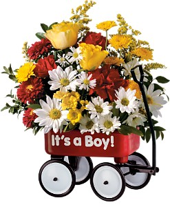 Teleflora's Baby's First Wagon - Boy in DeKalb IL, Glidden Campus Florist & Greenhouse