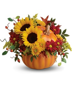 Teleflora's Pretty Pumpkin Bouquet in San Clemente CA, Beach City Florist