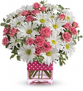 Teleflora's Polka Dots and Posies in Jamesburg NJ, Sweet William & Thyme