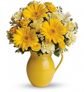 Teleflora's Sunny Day Pitcher of Cheer in San Bruno CA, San Bruno Flower Fashions