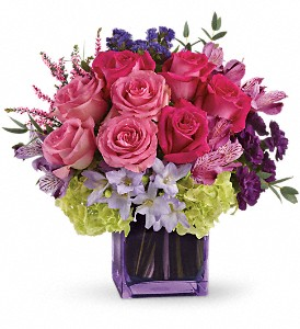 Exquisite Beauty by Teleflora in Sapulpa OK, Neal & Jean's Flowers & Gifts, Inc.