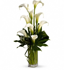 My Fair Lady by Teleflora in Grand Falls/Sault NB, Grand Falls Florist LTD