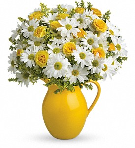 Teleflora's Sunny Day Pitcher of Daisies in Big Rapids MI, Patterson's Flowers, Inc.