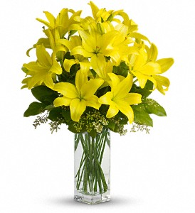 Teleflora's Lily Sunshine in Richmond Hill ON, FlowerSmart