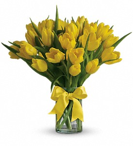 Sunny Yellow Tulips in Hillsborough NJ, B & C Hillsborough Florist, LLC.