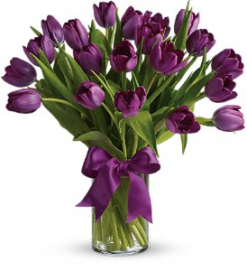 Passionate Purple Tulips in Drumheller AB, R & J Specialties Flower
