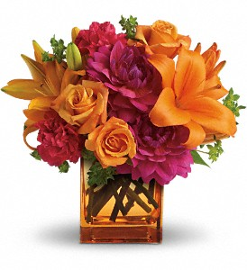 Teleflora's Summer Chic in Naples FL, Gene's 5th Ave Florist