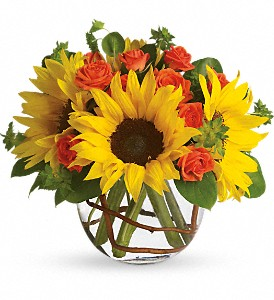 Sunny Sunflowers in Mount Morris MI, June's Floral Company & Fruit Bouquets