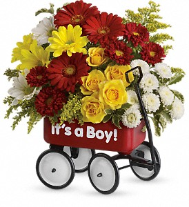 Baby's Wow Wagon by Teleflora - Boy in Rochester NY, Red Rose Florist & Gift Shop
