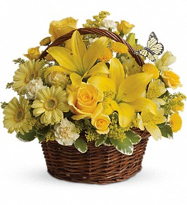 Basket Full of Wishes in Amherst NY, The Trillium's Courtyard Florist