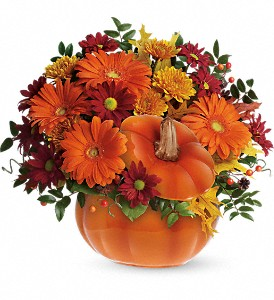 Teleflora's Country Pumpkin in White Rock BC, Ashberry & Logan