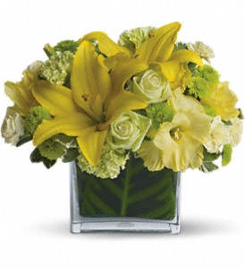 Oh Happy Day by Teleflora in Madison WI, Metcalfe's Floral Studio