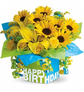Teleflora's Sunny Birthday Present in Laurel MD, Rainbow Florist & Delectables, Inc.