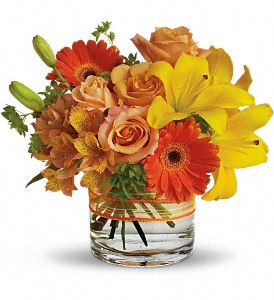 Sunny Siesta in Wellington FL, Wellington Florist