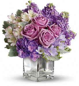 Sweet as Sugar by Teleflora in Williston ND, Country Floral