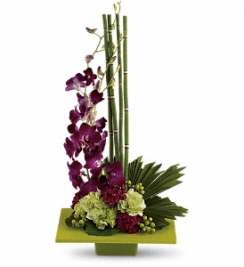 Zen Artistry in Bedford TX, Mid Cities Florist