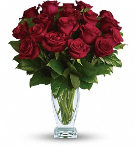 Teleflora's Rose Classique - Dozen Red Roses in Orlando FL, Harry's Famous Flowers