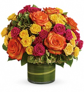 Blossoms in Vogue in Lexington KY, Oram's Florist LLC
