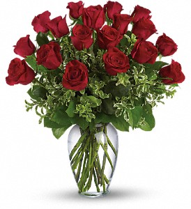 Always on My Mind - Long Stemmed Red Roses in Oak Forest IL, Vacha's Forest Flowers