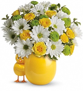 My Little Chickadee by Teleflora in Columbus OH, OSUFLOWERS .COM