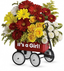 Baby's Wow Wagon by Teleflora - Girl in Olean NY, Mandy's Flowers