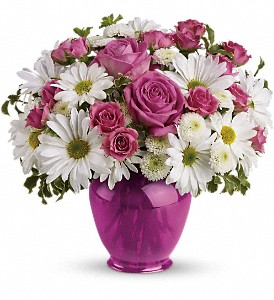 Teleflora's Pink Daisy Delight in Abington MA, The Hutcheon's Flower Co, Inc.