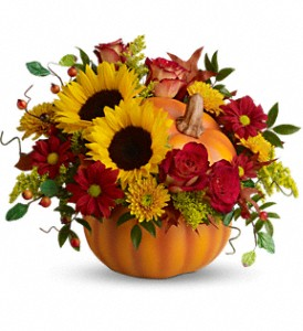 Teleflora's Pretty Pumpkin Bouquet in Cary NC, Cary Florist