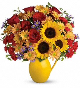 Teleflora's Sunny Day Pitcher of Joy in Frankfort IN, Heather's Flowers