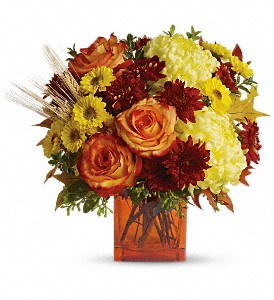 Teleflora's Autumn Expression in Winterspring, Orlando FL, Oviedo Beautiful Flowers