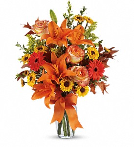 Burst of Autumn in Boone NC, Log House Florist