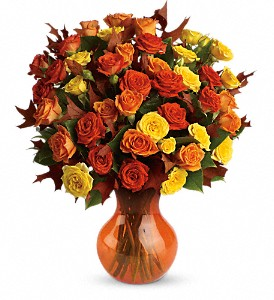 Teleflora's Fabulous Fall Roses in Hilton NY, Justice Flower Shop