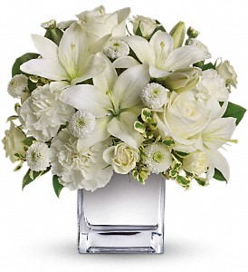 Teleflora's Peace & Joy Bouquet in Woburn MA, Malvy's Flower & Gifts