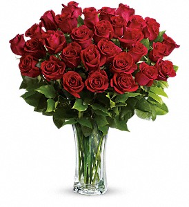 Love and Devotion - Long Stemmed Red Roses in Sayville NY, Sayville Flowers Inc