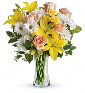 Teleflora's Daisies and Sunbeams in Festus MO, Judy's Flower Basket