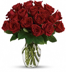 Enduring Passion - 12 Red Roses in Marshall MI, Rose Florist & Wine Room