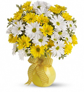 Teleflora's Upsy Daisy in Royersford PA, Three Peas In A Pod Florist
