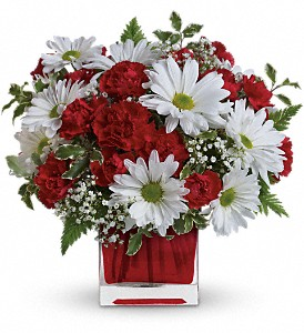 Red And White Delight by Teleflora in Woodstock ON, Old Theatre Flowers