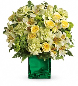 Teleflora's Emerald Elegance Bouquet in San Jose CA, Amy's Flowers