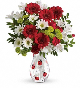 Teleflora's Lovely Ladybug Bouquet in flower shops MD, Flowers on Base