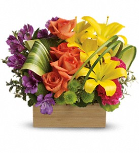 Teleflora's Shades Of Brilliance Bouquet in Orlando FL, Mel Johnson's Flower Shoppe