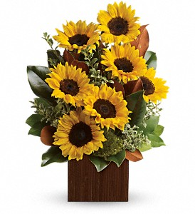 You're Golden Bouquet by Teleflora in Kent OH, Richards Flower Shop