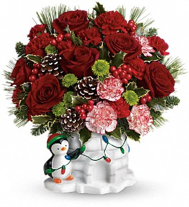 Send a Hug Christmas Cutie by Teleflora in Lebanon OH, Aretz Designs Uniquely Yours