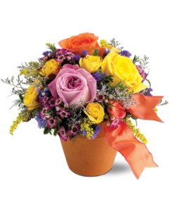 Teleflora's Sweet 'n Simple in Broomall PA, Leary's Florist
