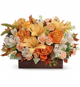 Teleflora's Fall Chic Bouquet in Woodbury NJ, C. J. Sanderson & Son Florist