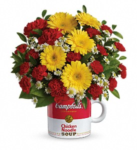 Campbell's Healthy Wishes by Teleflora in Woodbridge NJ, Floral Expressions