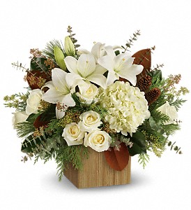 Teleflora's Snowy Woods Bouquet in The Woodlands TX, Rainforest Flowers