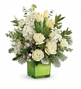 Teleflora's Winter Pop Bouquet in San Jose CA, Amy's Flowers