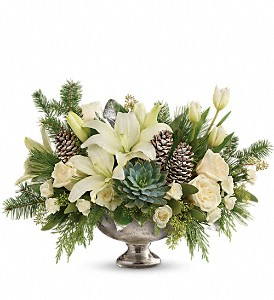 Teleflora's Winter Wilds Centerpiece in Pompano Beach FL, Grace Flowers, Inc.