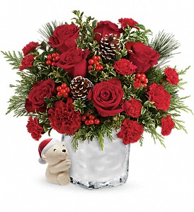Send a Hug Winter Cuddles by Teleflora in Lewistown MT, Alpine Floral Inc Greenhouse